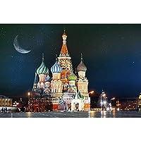 DB 5D DIY 美しいロシアダイヤモンド絵画手作りアートクロスステッチセットスクエアダイヤモンド刺繍モザイクパターン新年ギフトルーム装飾 (Color : ZF-283, Size : 60X80cmSquare)