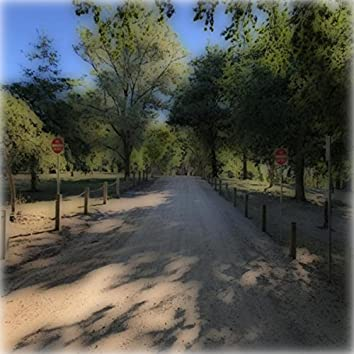 This Gravel Road