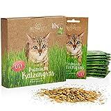 PRETTY KITTY Sachets de graines d'herbe à chat; Sachet de semence de Menthe aux chats pour plusieurs pots (10x 25g d'herbe à chat)