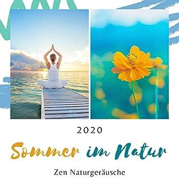 Sommer im Natur 2020: Zen Naturgeräusche Entspannungsmusik zum Beruhigen, Einschlafen, Meditieren
