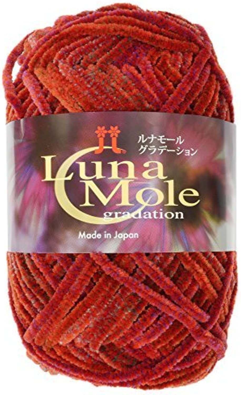 Lunamool gradation wool extreme red system 50 g 70 m 5 pieces set