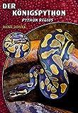 Der Königspython: Python regius (Art für Art: Terraristik)