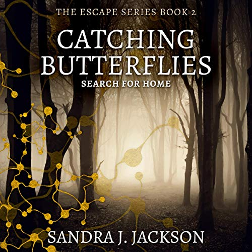 Catching Butterflies cover art