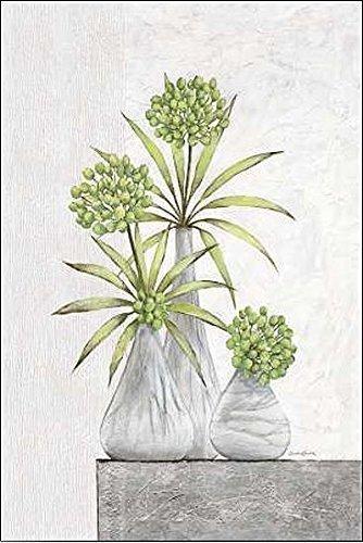 Rahmen-Kunst Keilrahmen-Bild - Claudia Ancilotti: Green Pearls Leinwandbild Stillleben modern floral grau (35x50)