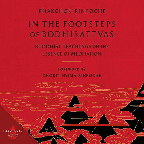 In the Footsteps of Bodhisattvas cover art