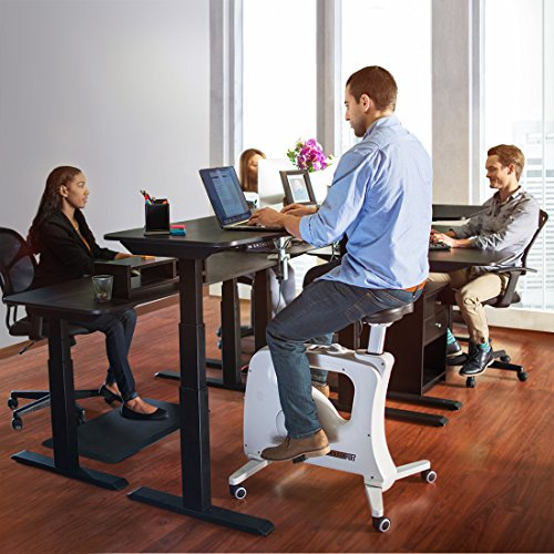 FLEXISPOT Home Office Exercise Bike