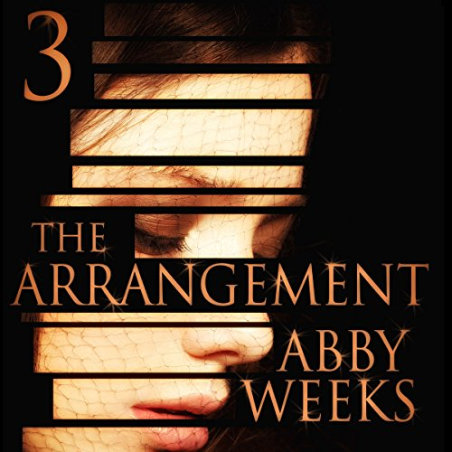 The Arrangement 3 audiobook cover art