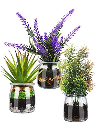 Artificial Plant Mini Potted Lavender Green Juicy for Home Office Bathroom Decoration Set of 3