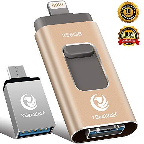 USB Flash Drive for iPhone/_ LUNANI 256gb