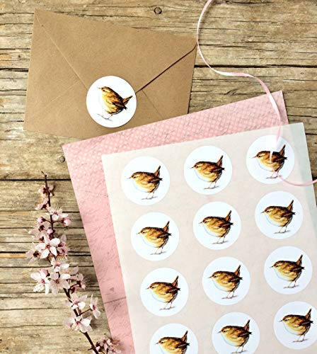 Zaunkönig Sticker A4 Bogen, kleiner Vogel Aufkleber 15 Stk. ca.5 cm Durchmesser, Oster-Aufkleber, Ostern Deko, Frühjahrs-Deko, selbstklebende runde Etiketten mit Meise Motiv