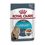 ROYAL CANIN Feline Urinary Care in Sosse   12 x 85 g comida para gatos