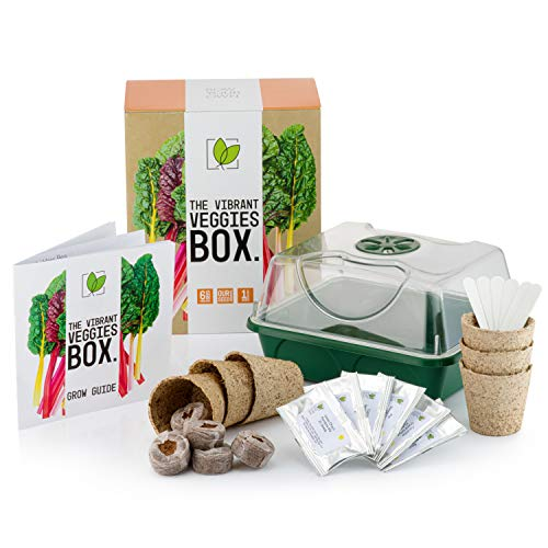Sow Your Own: The Vibrant Veggies Box - 6 Crazy Vegetable Seed Varieties to Grow Including 1 Mystery...