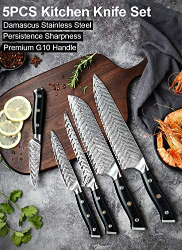 Damascus Chef Knife VG10 Professional Kitchen Knife Cleaver Cooking Tool Exquisite Plum Rivet G10 Handle With Knives Cover (2PCS Set)