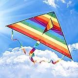 TQ Colorido del Arco Iris de la Cola de la Cometa Larga de poliéster Exterior Volar Cometas Juguetes para niños de los niños de la Resaca de la Cometa con la Barra de Control y 30m Línea