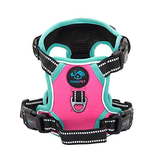 PHOEPET No Pull Harness