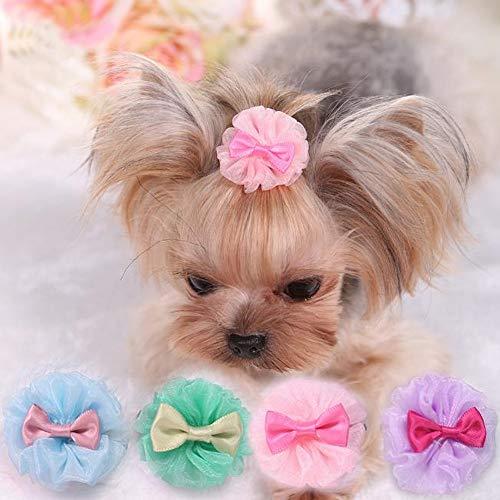 Hpybest 5 Lazos para Perros pequeños, Accesorios para el Cuidado del Pelo de Cachorros, Accesorios para Mascotas, Clips para el Pelo para el Cuidado de la Mesa Yorkshire, Lazos honden