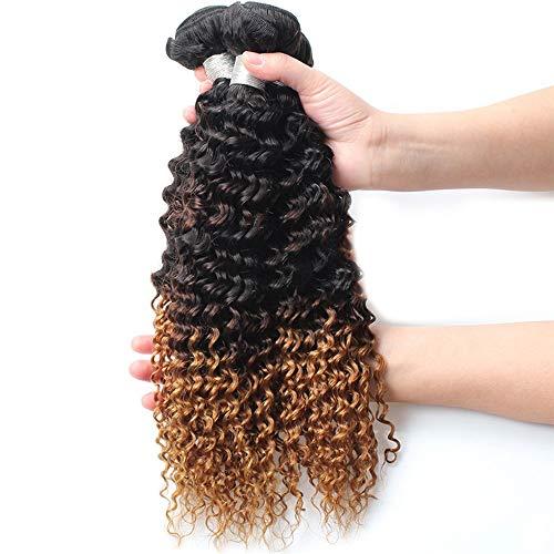 ERSD Haarteile Brasilianisches Haar Verworrene Lockige Schwarze Farbverlauf Braun Zweifarbige Farbe 100{02b38440af91fd244fefb020686df1131407511e0dcc1649851c5856b93659f2} Echthaar 9A Ombre Lockige Perücke Party Perücke (Farbe : Schwarz, Size : 16 inch)