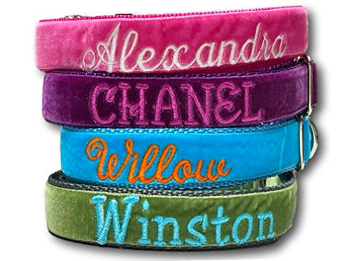 Customizable Velvet Dog Collar Gift with Leash Option in All Sizes, Personalized with your Pet's Name
