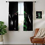 DRAGON VINES Cortinas opacas con bolsillo para barra de cortina para cocina Bo-ston-Cel-tics-Pa-ul-Pier-ce Sun Shade Set de 2 paneles W55 x L45
