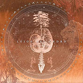 Lejos del Cedro (feat. Le Flâneur)