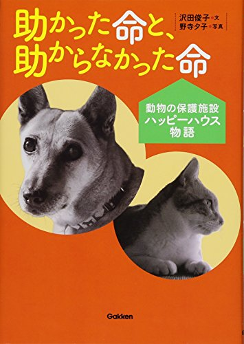 助かった命と、助からなかった命: 動物保護施設ハッピーハウス物語 (動物感動ノンフィクション)