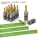 conecto CC50642 Bananenstecker High-End Professionell für alle Lautsprecherkabel mit einem