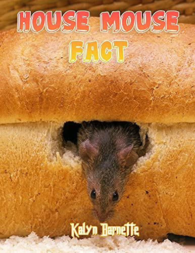 HOUSE MOUSE FACT: HOUSE MOUSE fact for girl age 1-10 HOUSE MOUSE fact for boy age 1-10 facts about all about HOUSE MOUSE