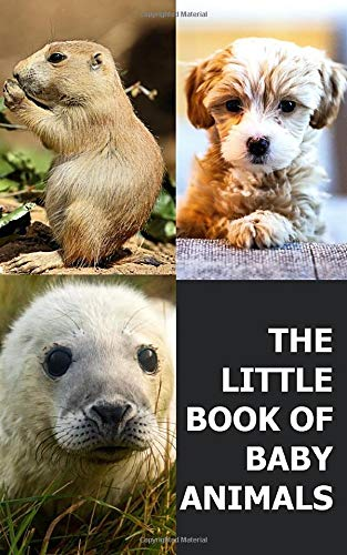 The Little Book Of Baby Animals: Photo Picture Book Collection Coffee Table...