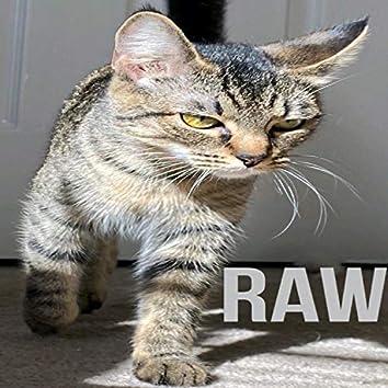 Raw (feat. Yakuzy)