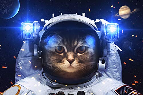 1000 Teiliges Puzzle für Erwachsene, 「Space Cat」, Familien recycelbare Materialien und hochauflösendes Druckpuzzle, Familienspiel, Teambuilding, Geschenk und Geschenk für Liebhaber oder Freunde.