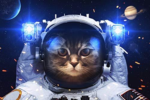 KAVAVO Puzzle de 1000 Piezas para Adultos,「Space Cat」,Materiales Reciclables de Primera Calidad y Rompecabezas de Impresión de Alta Definición,Juego,Formación de Equipos,Regalo y Regalo para Amantes.