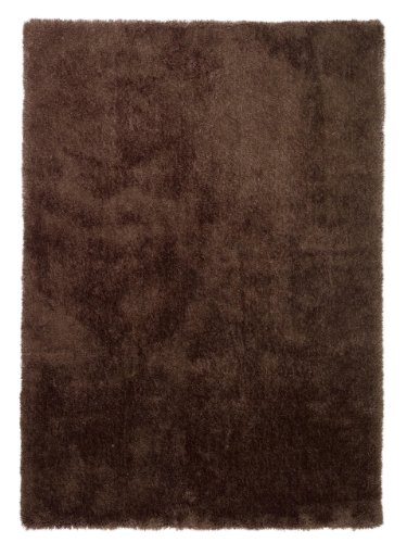 Innenteppich Colourcourage in Braun Rug Size: 200 x 300cm