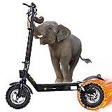 COKECO Trottinette Electrique Scooter électrique 1000W Scooter électrique Tout-Terrain Adulte...