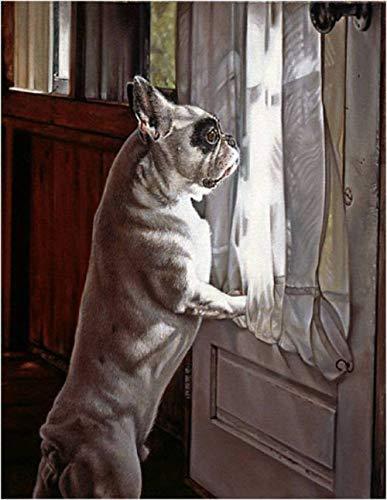 DIY olieverfschilderij door nummers Kits Thema Digitale Schilderij Bulldog Dier door de vensterbank Canvas Gift voor Volwassenen Kinderen Verjaardag Bruiloft Nieuwe Accommodatie of Kerstversiering