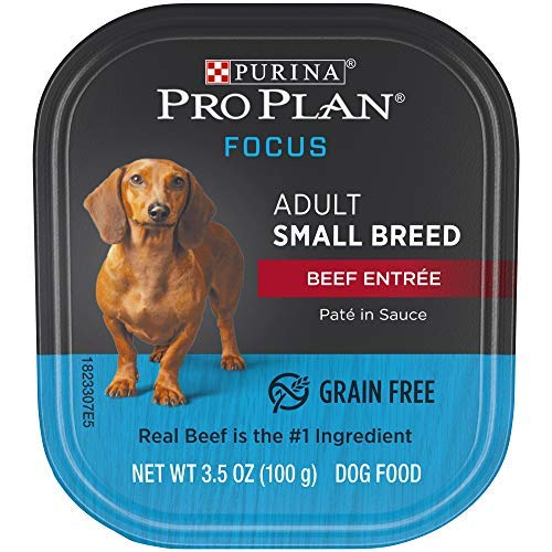 Purina Pro Plan Grain Free, High Protein Small Breed Pate Wet Dog Food, FOCUS Beef Entree in Sauce - (12) 3.5 oz. Trays