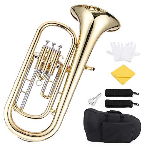 Fesjoy Bariton, Brass B Flaches Baritonhorn Bb Kolben-Goldlack-Oberflächenblasinstrument mit Mundstückn Reinigungstuch für Anfänger Blaskapelle