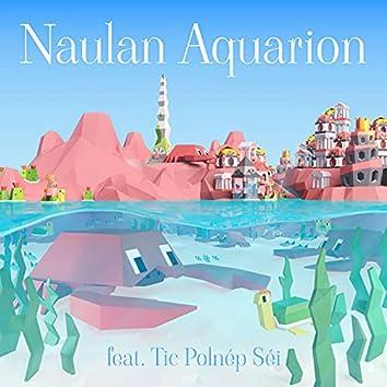 Naulan Aquarion