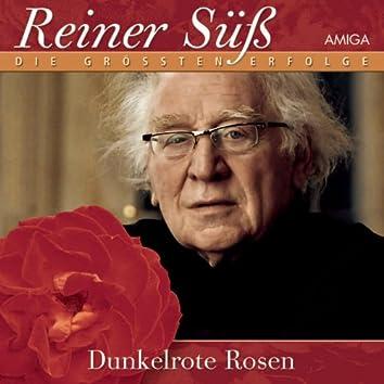 Dunkelrote Rosen