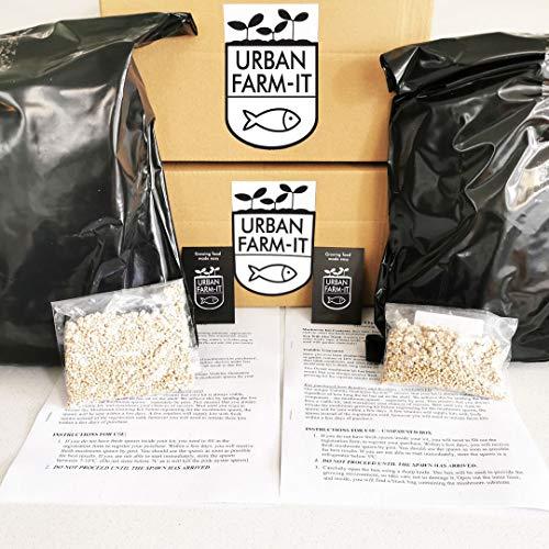 Urban Farm-It - XL Mixed Bundle Oyster Mushroom Growing Kits (Pink & Gold) | Grow Your Own Mushrooms...