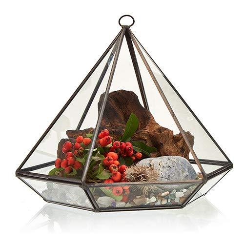 Bloomingtons Direct - Terrario de Cristal con Forma de Diamante Grande para Tus Habitaciones, Balcones, jardín