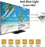 DPLQX Protettore, anabbagliante Chiaro/Blu 55 Pollici TV Monitor dello Schermo/Graffi la P...