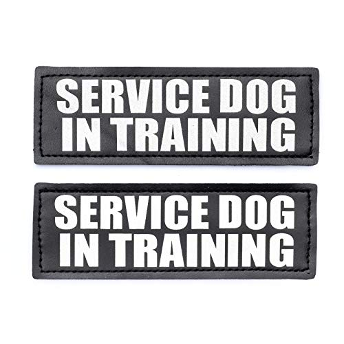 Service Dog in Training Patch with Hook Back and Reflective Lettering for Service Dog in Training Vests (Service Dog in Training, Large - 2