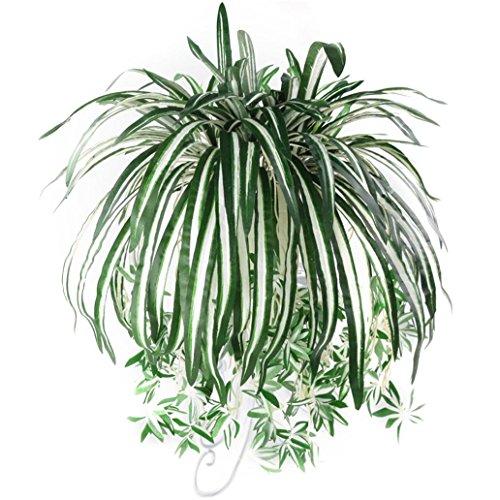 Amesii Grünlilie, Chlorophytum Comosum, Kunstpflanze, Dekoration für Zuhause, Hotels, 1 Stück