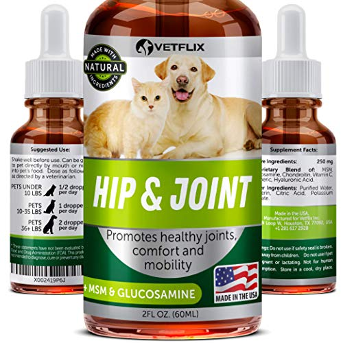 Wowpaw Dewormer for Dogs & Cats (2 OZ) - Made in USA - Worm Treatment for Pets - Natural Powerful Blend Against Whipworm, Hookworm, Roundworm & Tapeworm - Senior Pets, Kitten & Puppy Dewormer