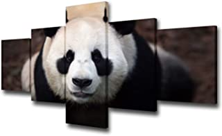 TUMOVO Cute Panda Canvas Wall Art Chinese Unique Mammal Picture Animals Painting Poster Premium Quality Artwork 5 Panel Ho...