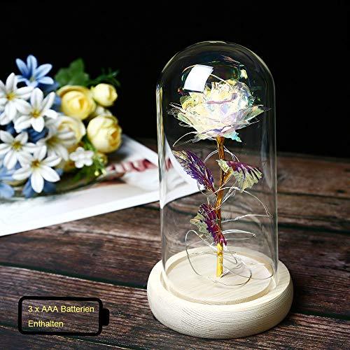 TINYOUTH Bunt Rose im Glas mit Licht, 2m/6.6ft 20 LED Lichterkette Warmweiß Künstliche Rose im Glas, AAA Batteriebetrieben Glaskuppel Rose für Hochzeitstag Muttertag Valentinstag Weihnachten