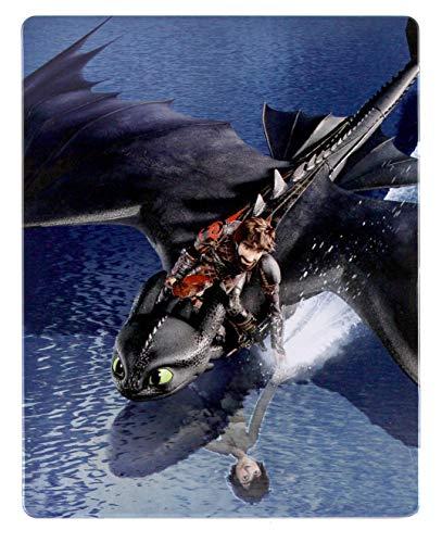 How to Train Your Dragon: The Hidden World 4K UHD Steelbook [Blu-Ray] [Region Free] (IMPORT) (Keine deutsche Version)
