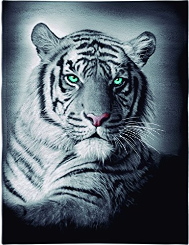 Textil Tarragó Tigre Toalla Estampada para Piscina, Algodón, Multicolor, 32x45x3 cm