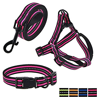 """Mile High Life Night Reflective Double Adjustable Band Nylon Small Puppy Pet Dog Combo Collar Leash and Harness Set (Pink, Small Neck 11""""-15"""" -20 lb)"""