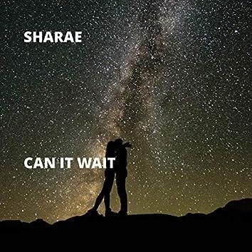 Can It Wait